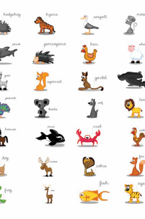 Dla dzieci Fototapeta - Learning by playing (animals)