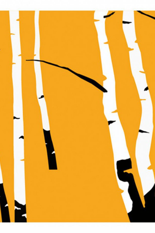 Fototapeta - Birches on the orange background