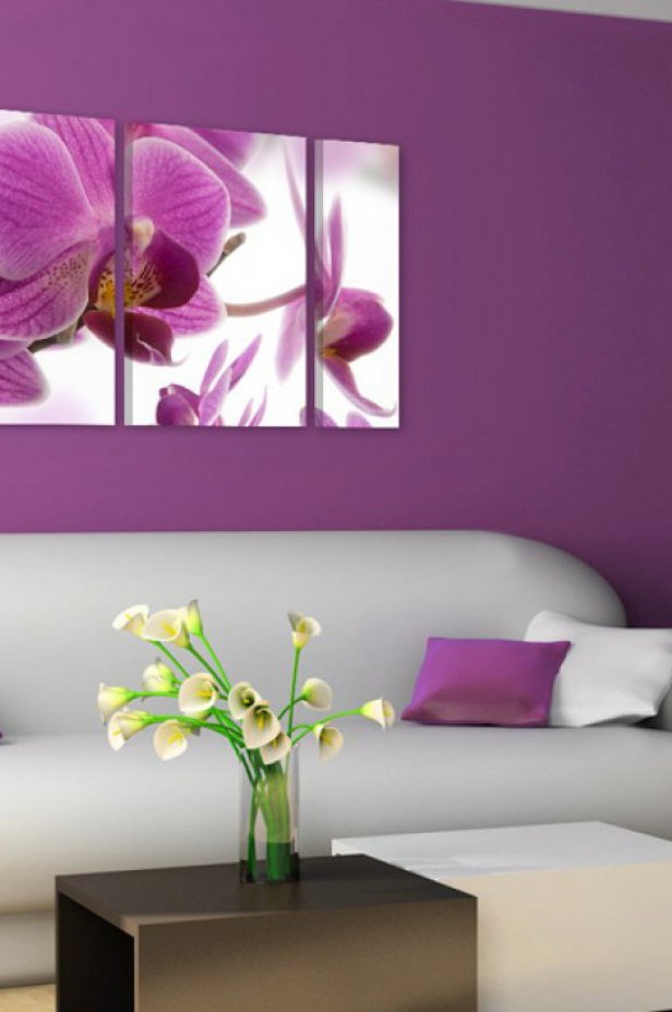 Orchidee Obraz - Marvelous orchid