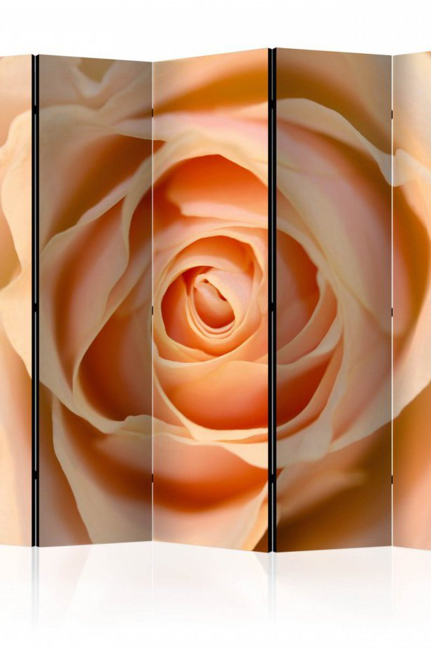 Parawan 5-częściowy - Peach-colored rose II [Room Dividers]